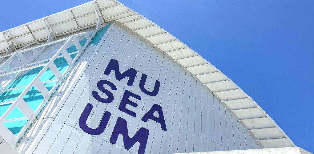 Installing the new MUSEAUM logo. Photo: Andrew Frollows