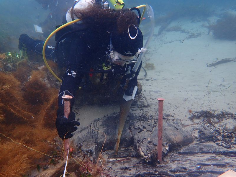 Irini Malliaros removes a timber sample from one of South Australian's ceiling planks. Some of the 'pink tubes' (copper-alloy bolts) that led to the shipwreck's discovery are visible in the foreground. Image Tim Zapor