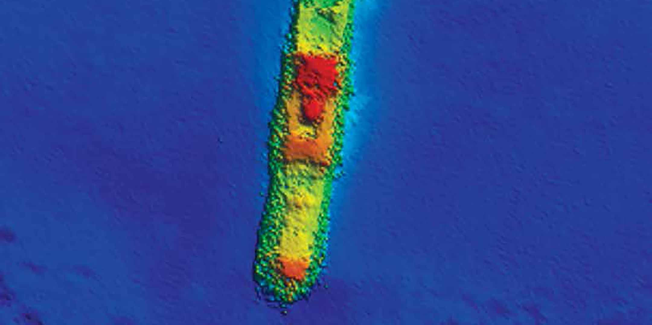 Multi-beam echo	sounder	image of SS Macumba. Image: CSIRO/Marine National Facility.