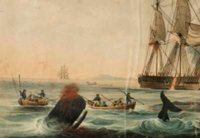 Illustrated log of the whaling barque TERROR