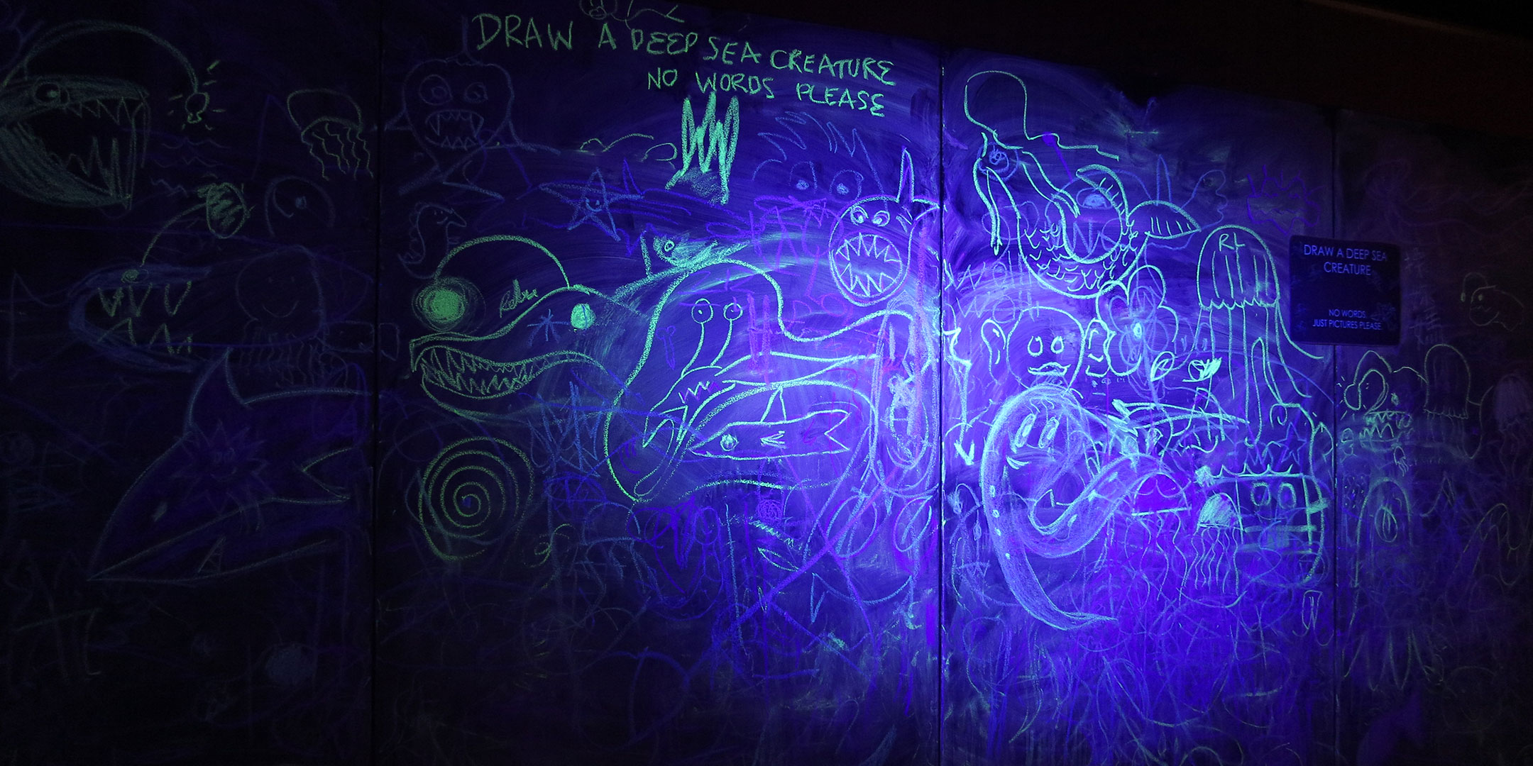 A mural of sea creatures