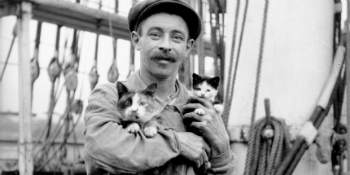 Seaman with cat and kitten, 1910s, Samuel J Hood Studio, Australian National Maritime Museum Collection