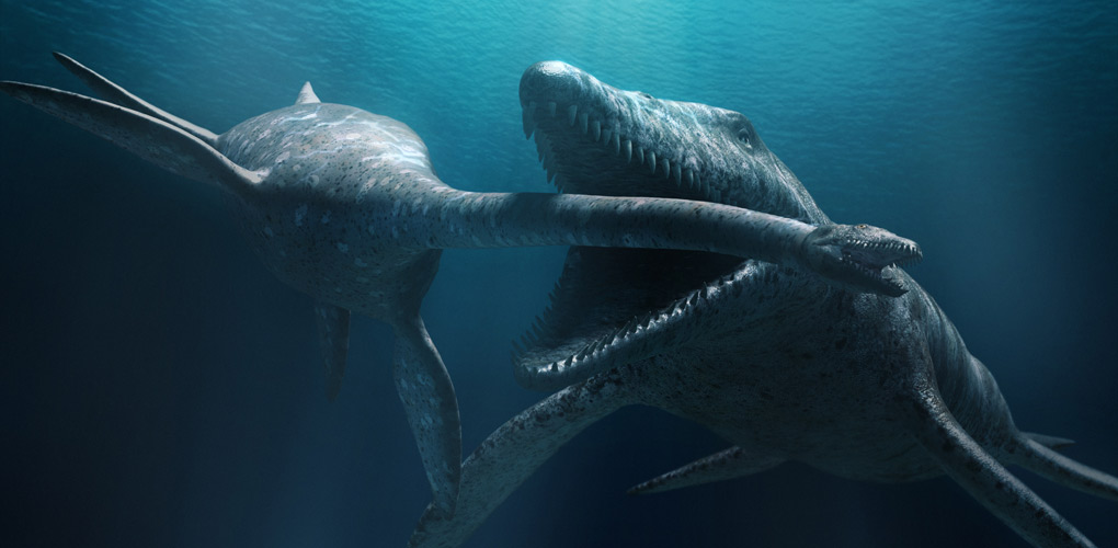 Kronosaurus attacking an Elasmosaurus. From Sea Monsters 3D film ©2007 NGHT Inc.