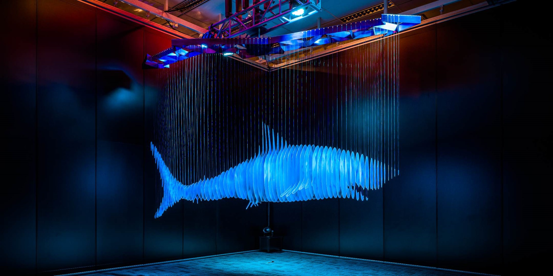 Sharks and Humanity| Image: LI JIWEI, Don't Copy II, kinetic work, dimensions variable. Plastic, propylene, stainless steel, dynamo and lighting 2015